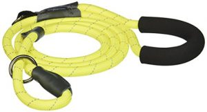 Bow & Arrow Pet Slip Lead Dog Leash, Reflective Nylon Rope Dog Leash for Training, Comfort Grip, 5 Feet, Neon Yellow