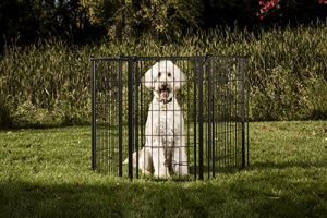 Carlson Pet Products Weather Resistant Outdoor 144-Inch Wide Gate and Pen, 36-Inch Tall