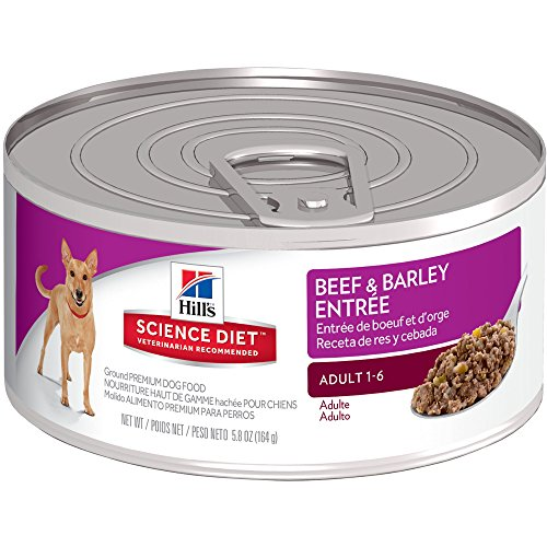 Hill's Science Diet Adult Wet Dog Food, Beef & Barley Entrée Canned Dog Food, 5.8 oz, 24 Pack