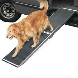 Rage Powersports DR-06 Folding Dog Ramps