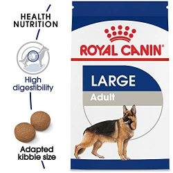 Royal Canin Size Health Nutrition Large Adult Dry Dog Food, 6 Lb