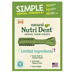 Nylabone Nutri Dent Natural Dental Treats, Dental Chews for Large Dogs, 16 Count