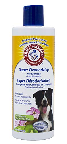 Arm & Hammer Super Deodorizing Shampoo for Dogs | Best Odor Eliminating Shampoo for All Dogs and Puppies, 16 ounces, Kiwi Blossom Scent