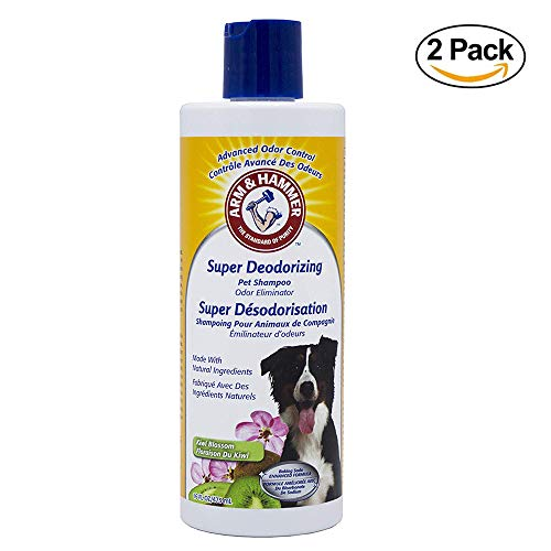 Arm & Hammer Super Deodorizing Shampoo for Dogs | Best Odor Eliminating Shampoo for All Dogs and Puppies, 16 ounces (Pack of 2), Kiwi Blossom Scent