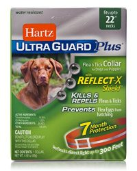 Hartz UltraGuard Plus Reflective Orange Flea & Tick Collar for Dogs and Puppies – 22″ Neck, 7 Month Protection