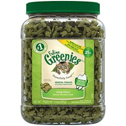 Feline Greenies Dental Cat Treats, Catnip Flavor, 21 Ounce Tub