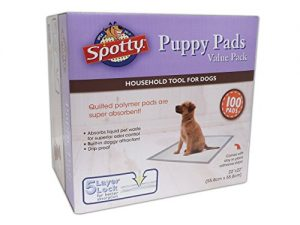 Spotty 100 Count Puppy Pads