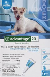 Bayer topical Flea Treatment for Dogs 11-20 lbs (6 Applications)