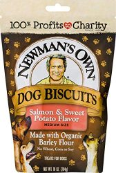 Newman's Own Dog Biscuits, Salmon & Sweet Potato – Breakable, 10-oz. (Pack of 6)
