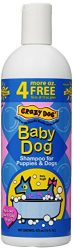 Crazy Dog Baby Powder Shampoo for Dogs, 16-Ounce