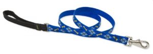 Lupinepet Originals 3/4″ Dapper Dog 6-Foot Padded Handle Leash For Medium And Larger Dogs