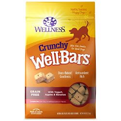 Wellness Natural Grain Free Wellbars Crunchy Dog Treats, Yogurt, Apples & Bananas Recipe, 45-Ounce Bag
