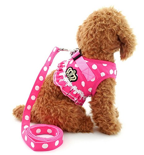 Brother cat Dog Puppy Small Dog/Cat Dots Vest Harness Leash Set Mesh Padded No Pull Lead Pink M