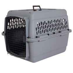 Aspen Pet Traditional Kennel, 28″