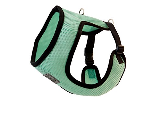 RC Pet Products Cirque Soft Walking Dog Harness, Medium, Mint