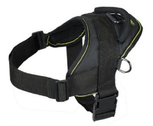 Dean and Tyler DT Dog Harness, Black With Yellow Trim, Medium – Fits Girth Size: 28-Inch to 34-Inch