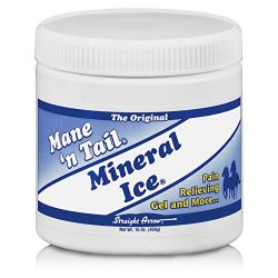 Mineral Ice Therapeutic Pain Reliever for Horses 16 Ounce