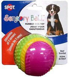 Ethical Pets Sensory Ball Dog Toy, 2.5″