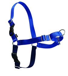 PetSafe Easy Walk Harness,  Large, ROYAL BLUE/NAVY BLUE for Dogs