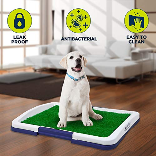 The Humane Society Antibacterial Dog Grass Training Pad (Gray or Navy)