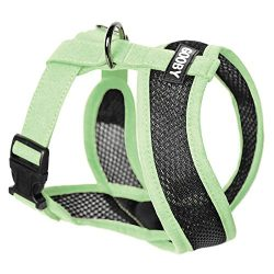 Gooby – Active X Head-in Harness, Choke Free Small Dog Harness with Synthetic Lambskin Soft Strap, Green, Small
