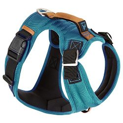 Gooby – Pioneer Dog Harness, Small Dog Head-in Harness with Control Handle and Seat Belt Restrain Captability, Turquoise, Small