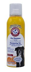 Arm & Hammer Dry Aerosol Spray Shampoo for Dogs | Best Waterless Shampoo Aerosol For All Dogs and Pupp, 3.5 ounces, Blood Orange Scent