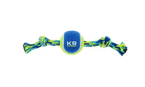 ZEUS K9 Fitness Knotted Rope Bone 9in