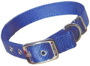 Hamilton Double Thick Nylon Deluxe Dog Collar, 1-Inch by 22-Inch, Berry Blue
