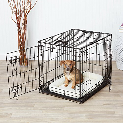 AmazonBasics Double-Door Dog Crate and Padded Bolster Bed – Small