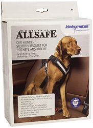 The Allsafe Harness, Medium
