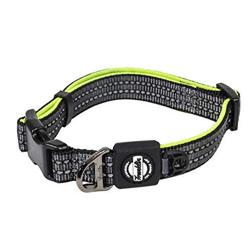 Franklin Pet Supply Nylon Dog Collar – Reflective Co – Comfort Fit – Neoprene – Adjustable – Small – Green