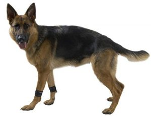 Kruuse Rehab Weight Cuffs for Dogs, Medium