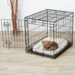 AmazonBasics Single-Door Dog Crate and Padded Bolster Bed – Small