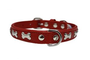 "Leather ""Bones"" Dog Collar, Padded, Double-Ply,  Riveted Settings, 16″ x 3/4″, Red, Leather (Rotterdam Bones) Neck Size: 11.5″ – 14″"