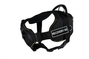 "Dean & Tyler DT Fun ""Recovery K9"" Dog Harness with Padded Chest Piece, Fits Girth Size 32-Inch to 42-Inch, Large, Black with Yellow Trim"