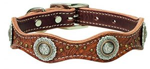 Weaver Leather Pet Western Edge Dog Collar
