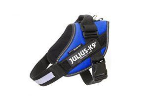 Julius-K9 16IDC-B-1 IDC Power Harness, Size: 1 (63-85cm/26-33.5″), Blue