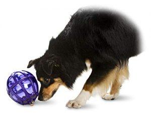 PetSafe Busy Buddy Kibble Nibble Meal Dispensing Dog Toy, Medium/Large