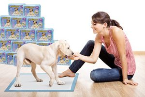 Pawssible Training Puppy Pads (250 Count) 5 Star Housebreaking Pads ✯✯✯✯✯