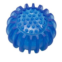 Petper CW-0047 Dog Ball Toy, Squeaky Play Pet Toy, Blue