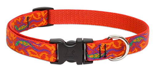 LupinePet Originals 3/4″ Go Go Gecko 13-22″ Adjustable Collar for Medium and Larger Dogs