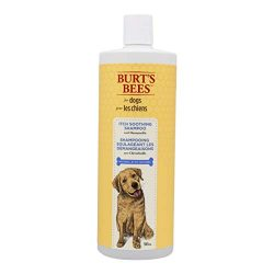 Burt's Bees For Dogs Natural Itch Soothing Shampoo with Honeysuckle | Anti-Itch Dog Shampoo, 32 Ounces