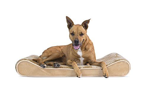 FurHaven Pet Dog Bed | Orthopedic Minky Plush & Velvet Luxe Lounger Pet Bed for Dogs & Cats, Camel, Large