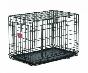 MidWest Homes for Pets Life Stages ACE Double Door Dog Crate, 24-Inch
