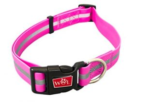 Reflective, Waterproof, Stink Free, Adjustable and Durable Collar For Dogs – 2 Year Warranty- Neon Pink, Medium Size