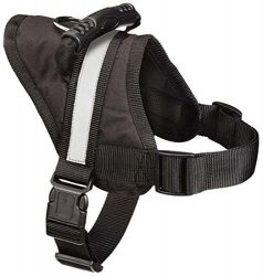 Guardian Gear Excursion Dog Harness, Large, Fits Chests 27″ to 36″, Black