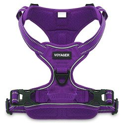 Voyager by Best Pet Supplies -Dual-Attachment No-Pull Adjustable Harness with 3M Reflective Technology, (Purple Lattice, Medium)