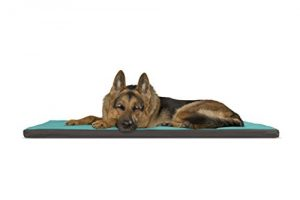 FurHaven Pet Kennel Pad | Reversible Two-Tone Water-Resistant Crate or Kennel Pad Pet Bed for Dogs & Cats, Chocolate/Blue, X-Large