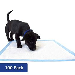 Amazon Brand – Solimo Puppy Pads, Regular Size, 100 Count